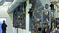 ارتفاع عدد السجناء المغاربة بإسبانيا وهذه هي تكلفتهم