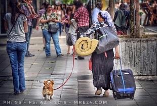 بروكسيل: آش خصك العريان، لكلب آ مولاي