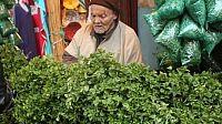 النعناع المغربي: لم يعد موضع ترحيب في أوروبا